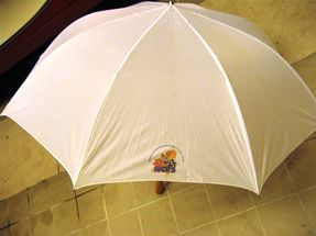 NCRS - The Dutch Chapter Umbrella